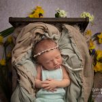 Newborn photography Brereton baby with daffodils