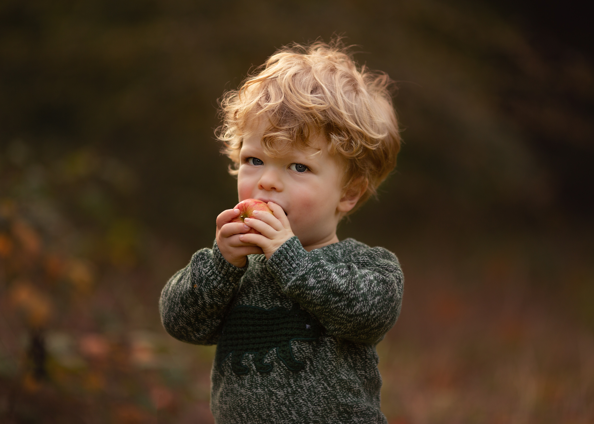 Rufus eating an apple outside during an outdoor family portrait session in Nantwich, Cheshire