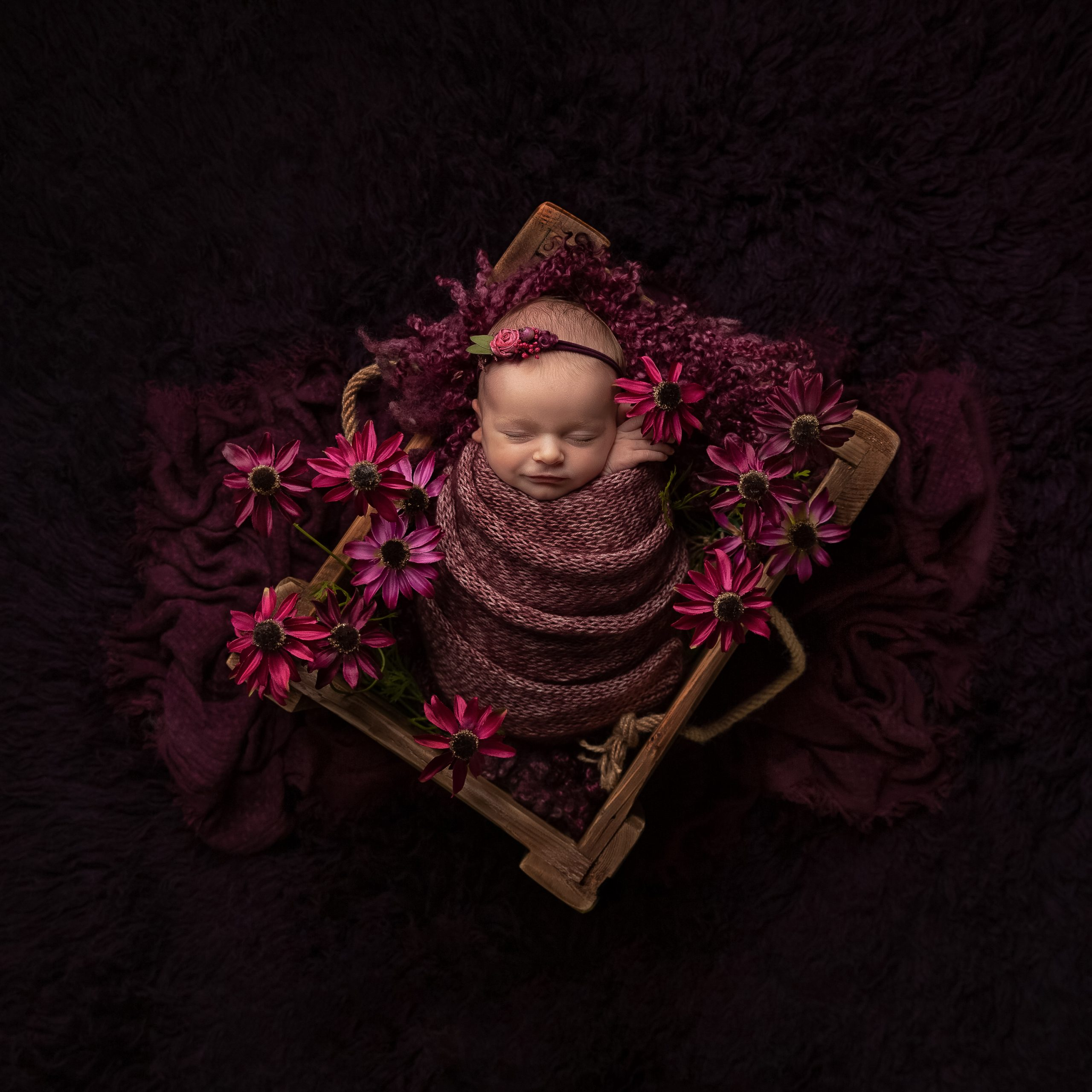 Baby girl in a wooden crate surrounded by echinacea as part of my Master Craftsman in Newborn Photography panel by award winning photographer