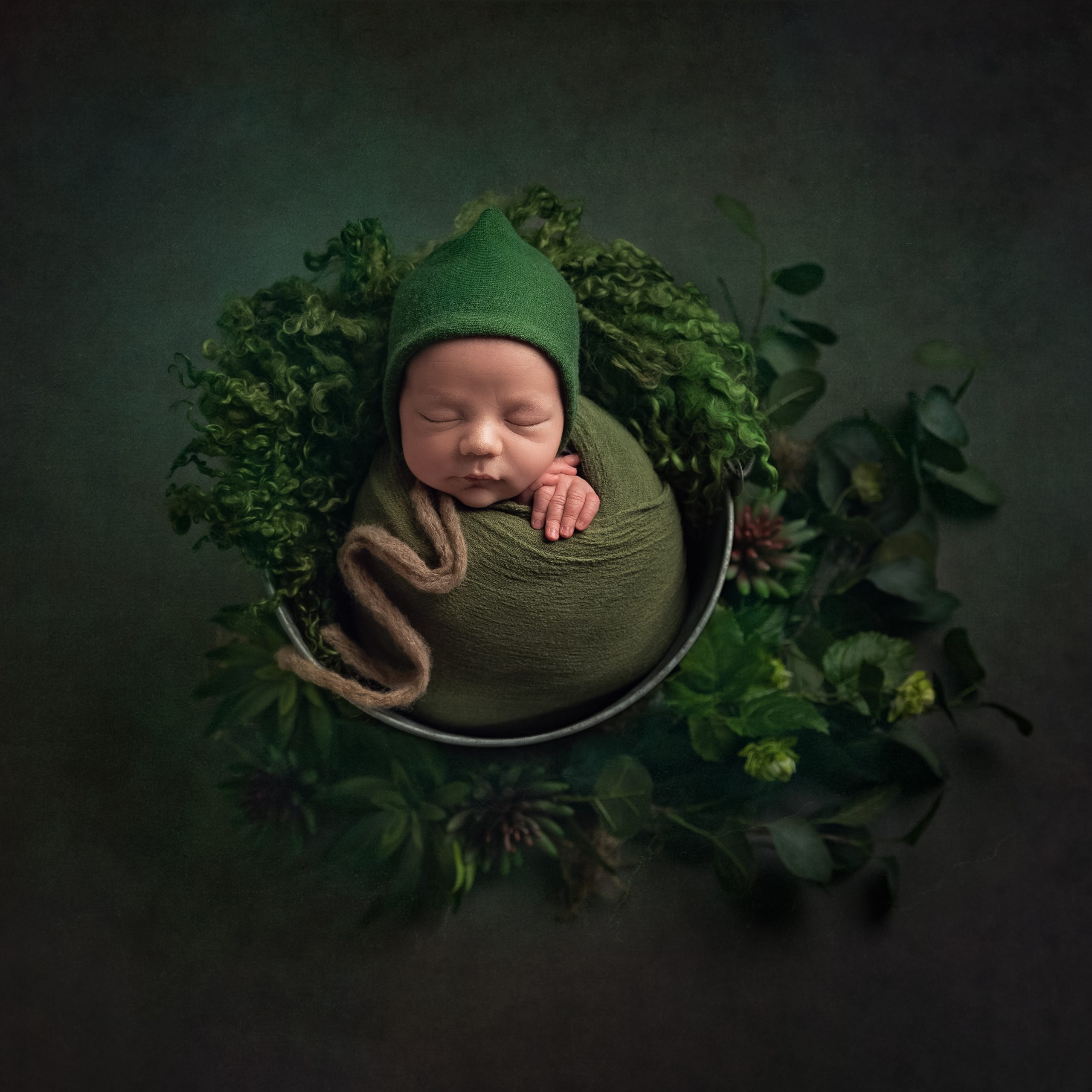 Newborn baby in a bucket with succulents as part of my Master Craftsman in Newborn Photography panel by award winning photographer