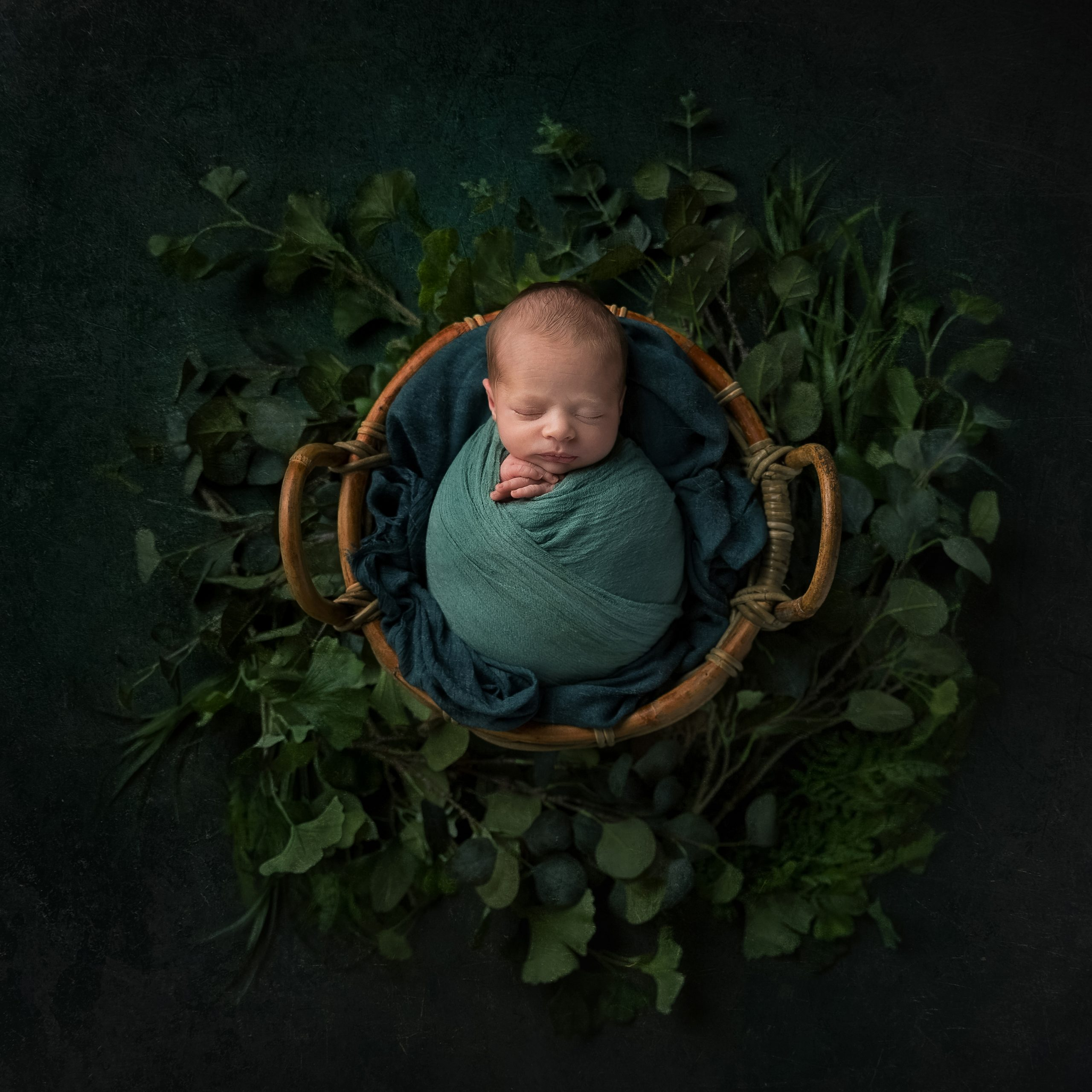 Newborn baby wrapped in green with leaves as part of my Master Craftsman in Newborn Photography panel by award winning photographer