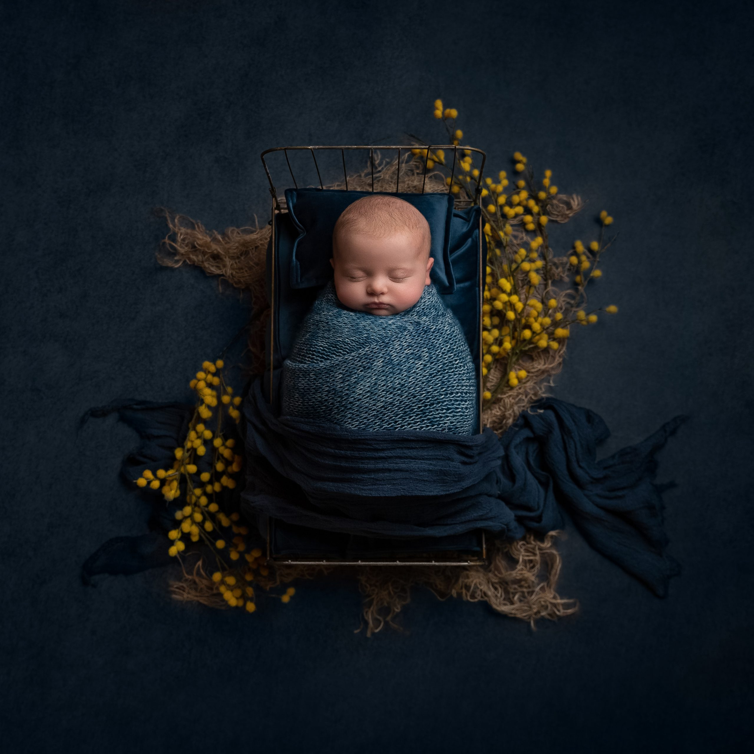 Baby girl in a wire bed with yellow flowers as part of my Master Craftsman in Newborn Photography panel by award winning photographer