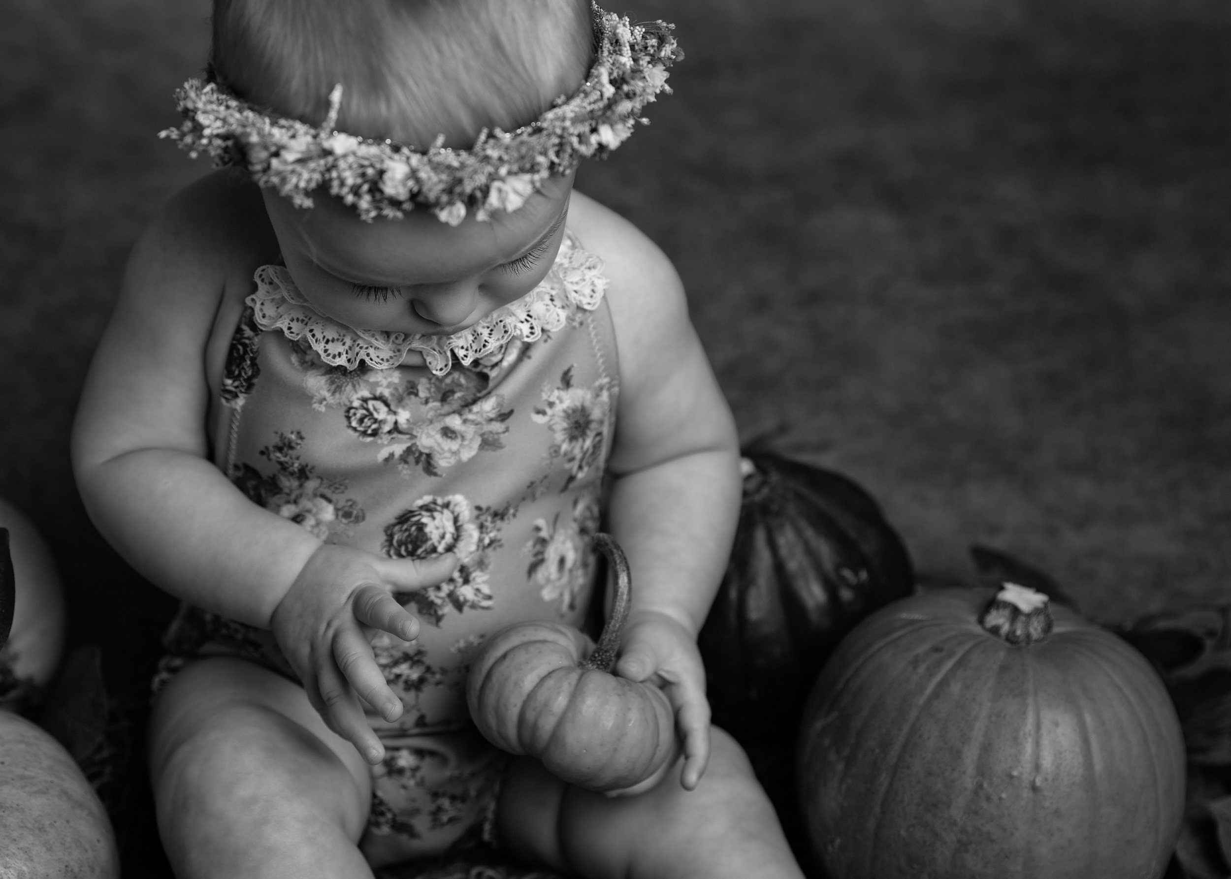 6 month old baby girl holding a pumpkin taken during a milestone portrait session in Sandbach, Cheshire