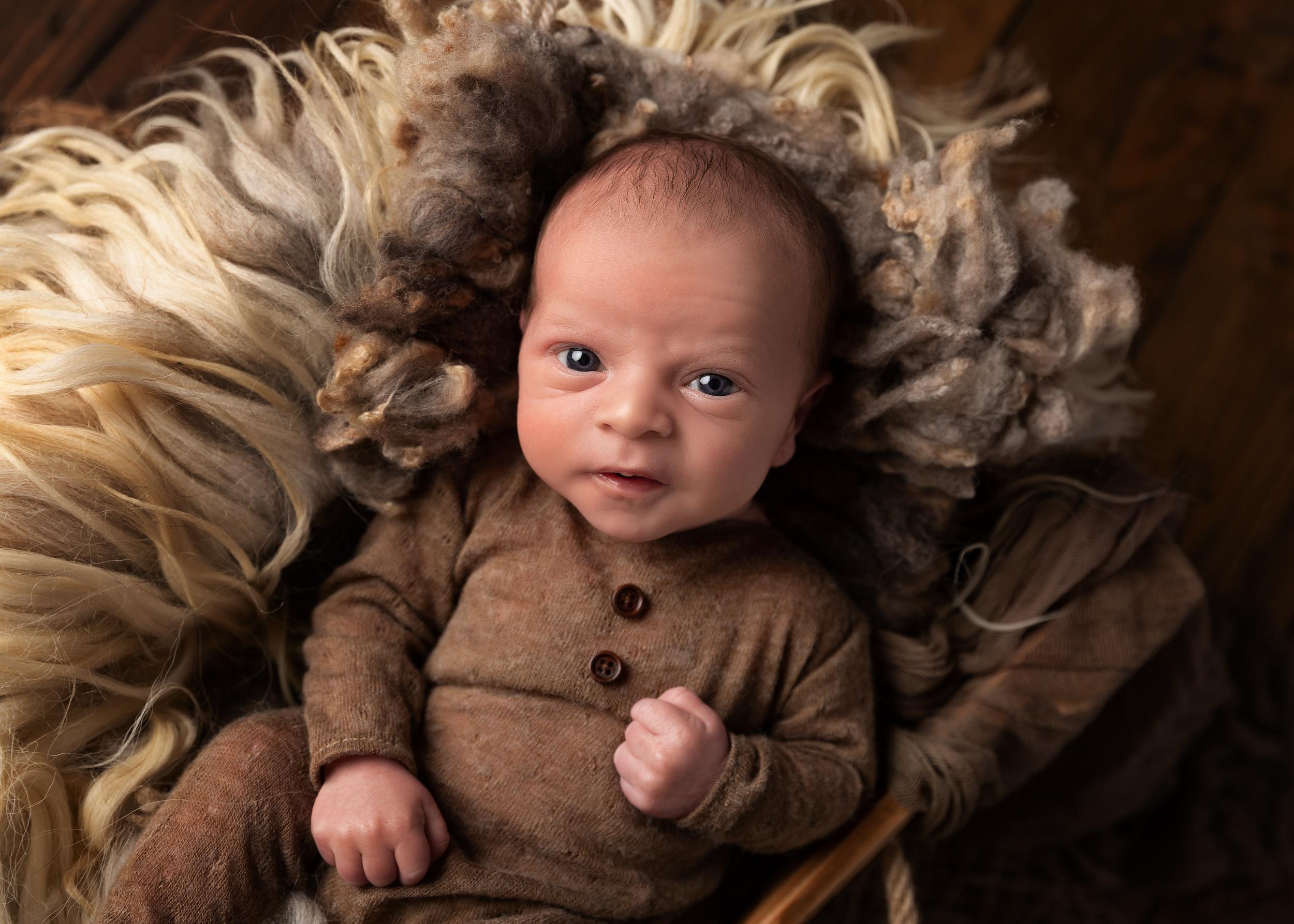 Awake baby staring right into the camera by Cheshire newborn photographer in Sandbach