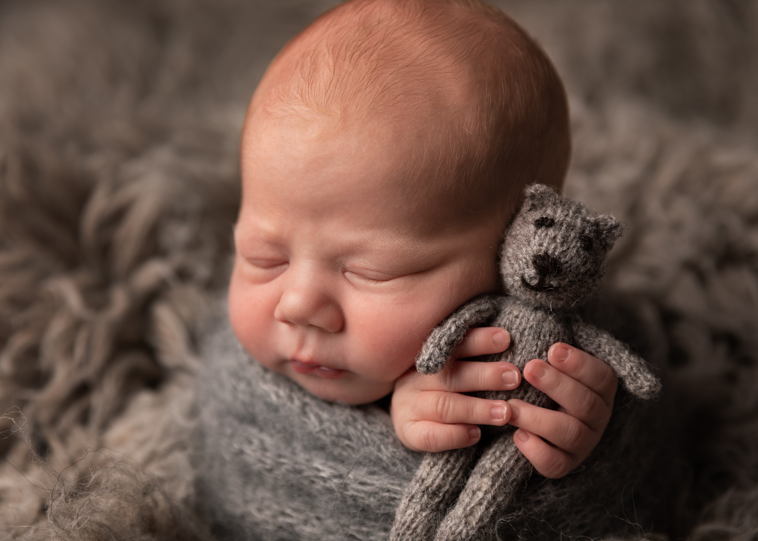 Newborn wrapped in potato sack pose in grey colour scheme with teddy by Cheshire newborn photographer in Sandbach