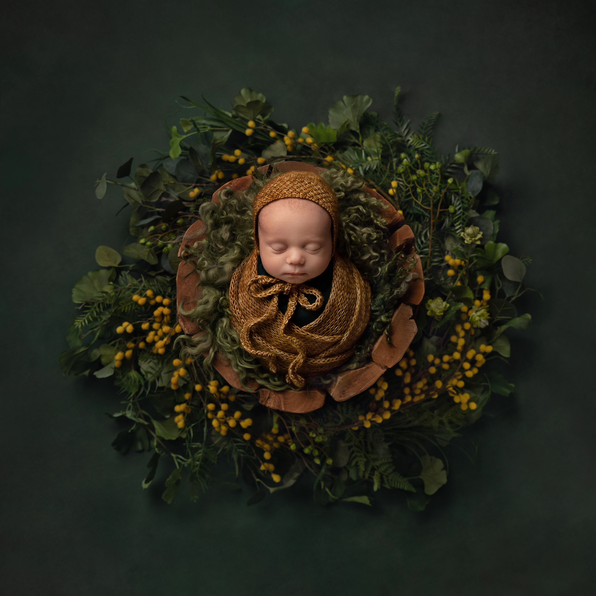 Newborn baby wrapped in a mustard knit wrap with wooden prop and greenery all around Cheshire Newborn Photographer in Sandbach