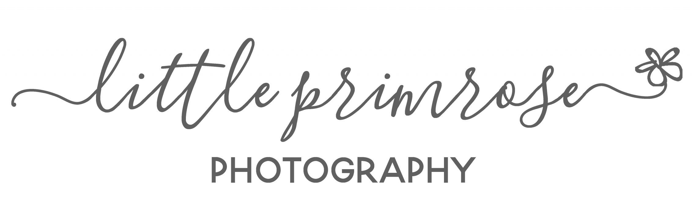 Little Primrose Photography